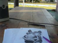 kreslím na zahradě v práci na verandě. Venku je ještě trochu sníh.....