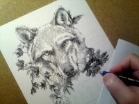 Vlk - návrh na tetování