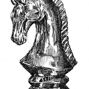 Šachová figurka - kůň