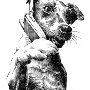 Pes a mobil