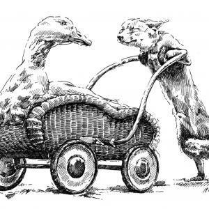Husa a liška