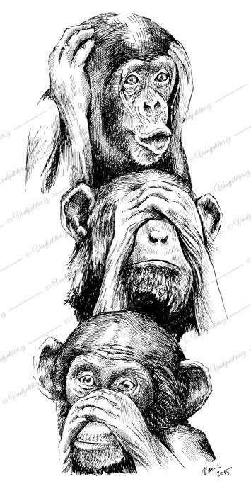 Nevidím, neslyším, neřeknu... opice