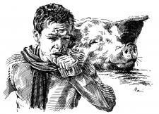 Prasečí chřipka