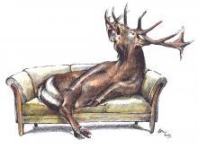 Jaroměřice nad Rokytnou - jelen na gauči